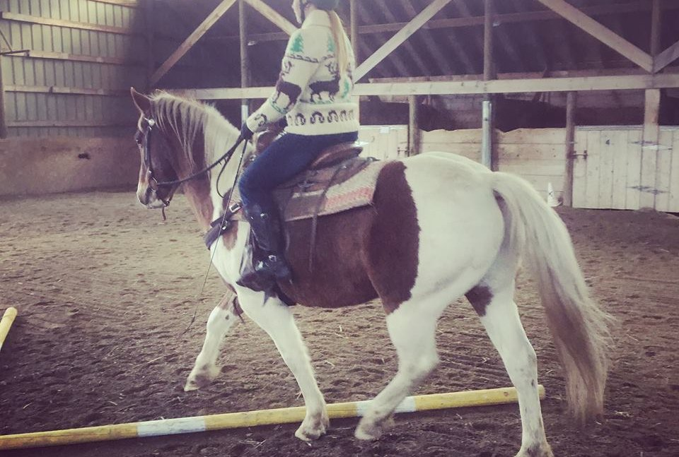 Hoof To Heart Horsemanship Novice Rider Learn Ride